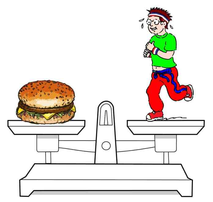 spinonews List of best diets