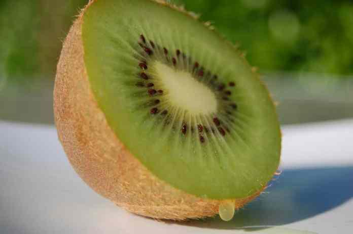 spinonews kiwi fruit