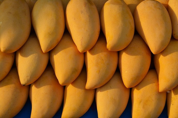 spinonews Mango Benefits