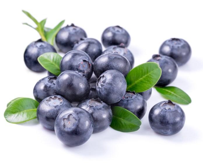 spinonews blueberry