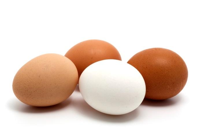 areflect type of egg