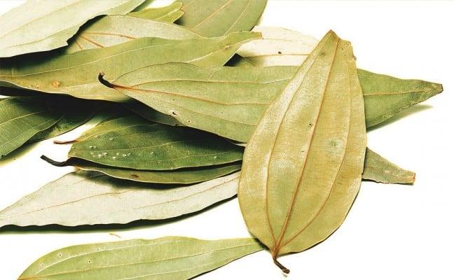 areflect bay leaf