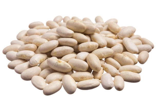 areflect Navy beans