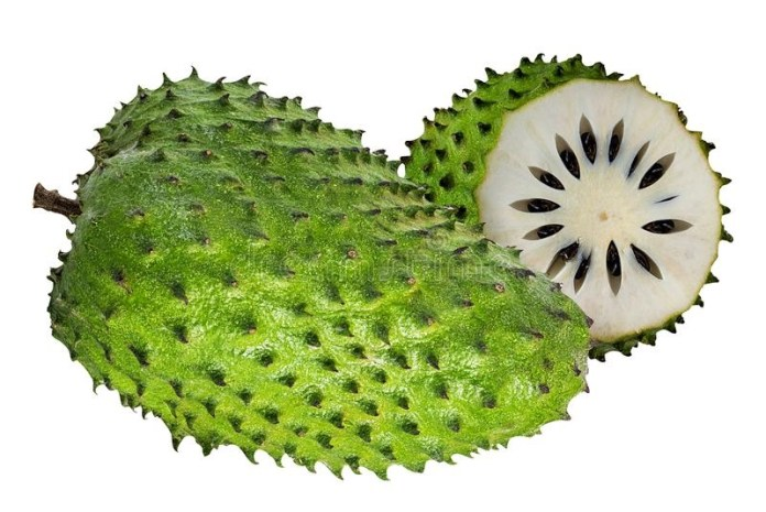 areflect Soursop