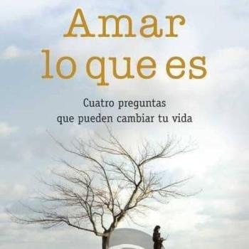 AMAR LO QUE ES - Books 4 Pocket