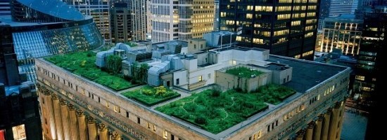 Franta obliga adoptarea panourilor solare / plantelor