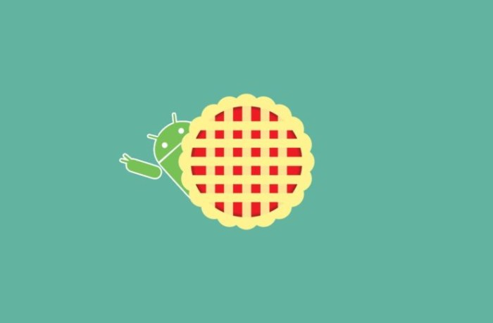 Android Pie 9.0 pe gama Samsung Galaxy