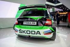 Skoda Fabia R5 2