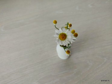 Imprimanta-3D-EasyThreed-Nano (11)