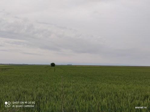Xiaomi-Mi-5G-camera-samples (41)