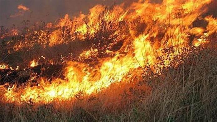 ΤΩΡΑ: Φωτιά Κοντά σε σπίτια στο Κιάτο στην περιοχή Τραγάνα
