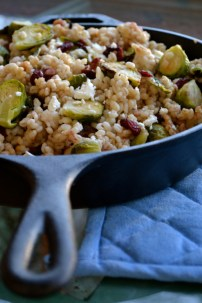 Roasted Brussels Sprouts, Goat Cheese, and Cranberries over Barley