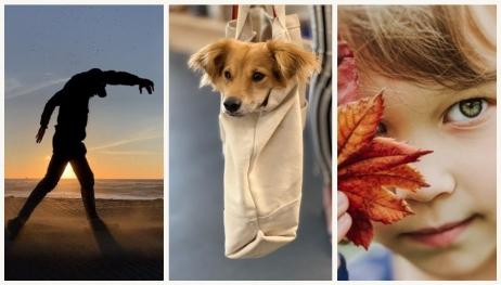 iPhone XS ile çekilen birbirinden harika fotoğraflar!