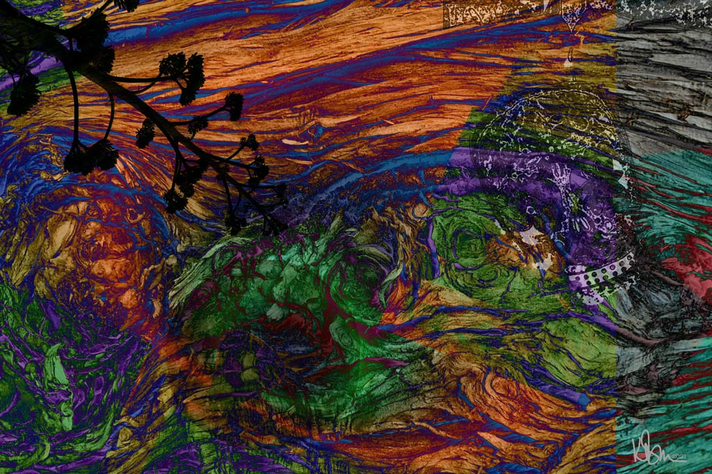 abstract art by Kimberly Darwin