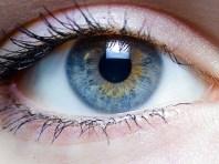 4ce4609c84e843399f442a14767f1340-iris_-_left_eye_of_a_girl