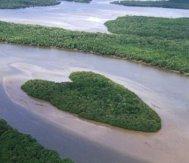 altres-4-corazones-naturaleza-08