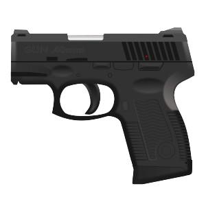 Pistol, vapen