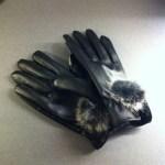 iPhonehandskar