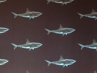Tapet med hajar