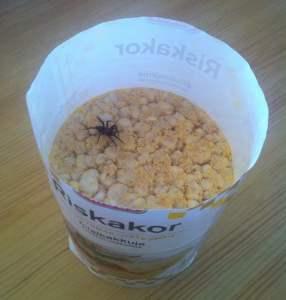 Riskakor med ostsmak. Och en spindel på en riskaka.