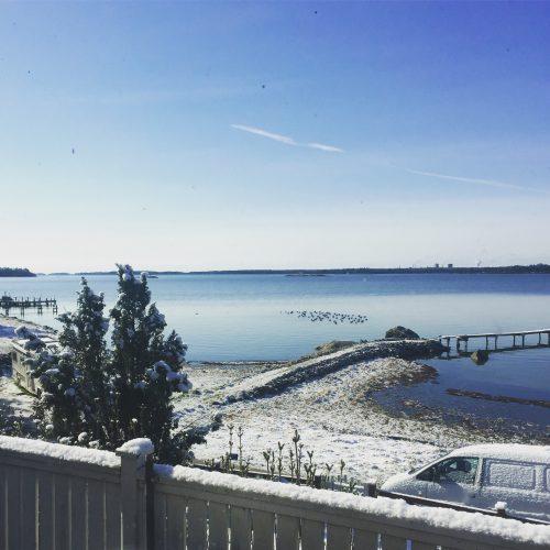 Vinter, snö, vy över lantstället, blå himmel och hav