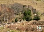 Ascensión a La Rhune en tren de cremallera