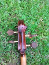 Verdi 1