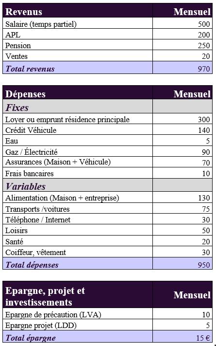 budget pour vivre avec moins de 1000 euros par mois