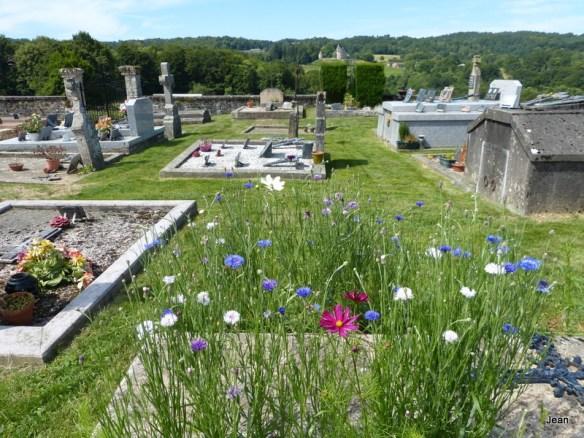 Terre saine cimetière
