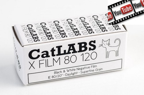 Catlabs test