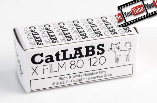 Catlabs test