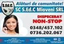 S.Ed.C. Mioveni angajează AUDITOR INTERN