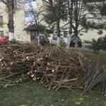 Curățenia de primăvară continuă la Mioveni