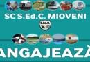 S.Ed.C Mioveni angajează!