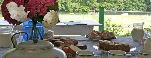 argideen lawn tennis club