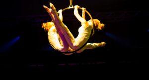 Aerial Ring Act - Corporate Entertainment - Argolla Show