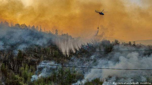 Фото:  Тушение лесного пожара на Камчатке, 2020 год