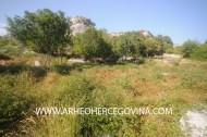 Potkuk, Gornja Bitunja, Berkovići Srednjovjekovno groblje, bilig, stećak, UNESCO
