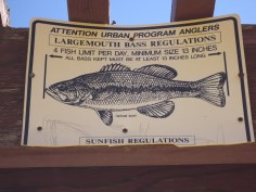 AZ Fish and Game stocks the lake for urban fishers.