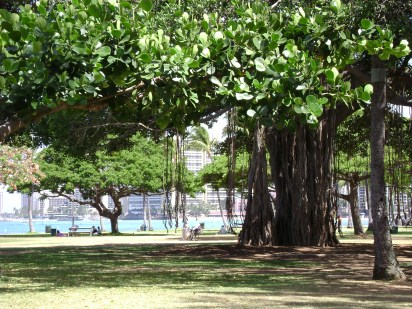Oahu June 25 2012 088