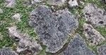 首里城の石