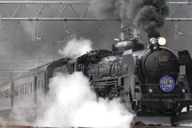 ¿Subirse o no subirse al tren del mame?, esa es la cuestión