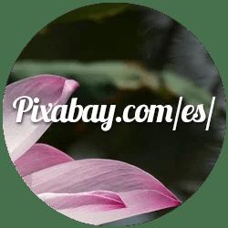 pixabay-aripasa-blog-imagenes-libres-de-derecho-de-autor-para-uso-personal-y-comercial