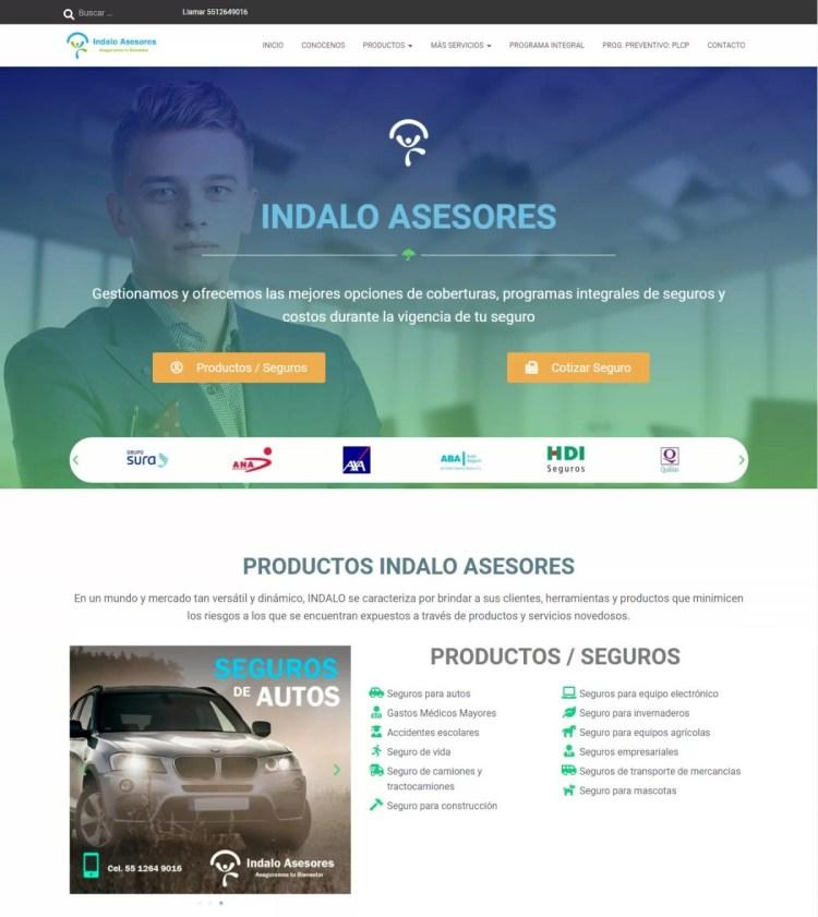 Diseñadores web para agencia de seguros en México