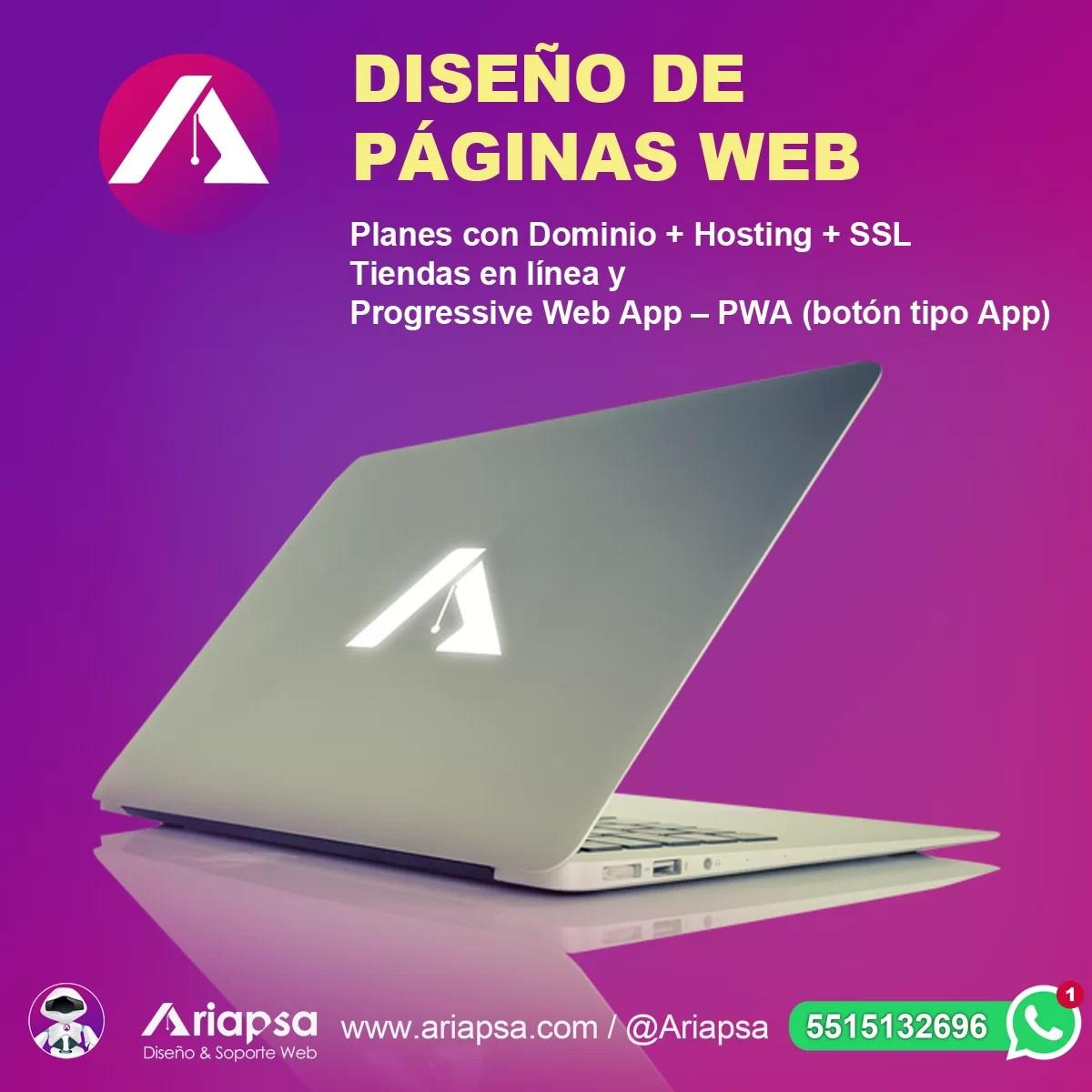Diseño web México Ariapsa 4A