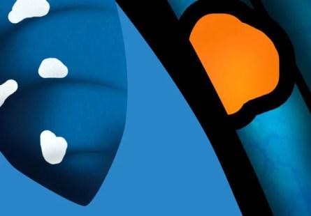 2-mariposa-azul