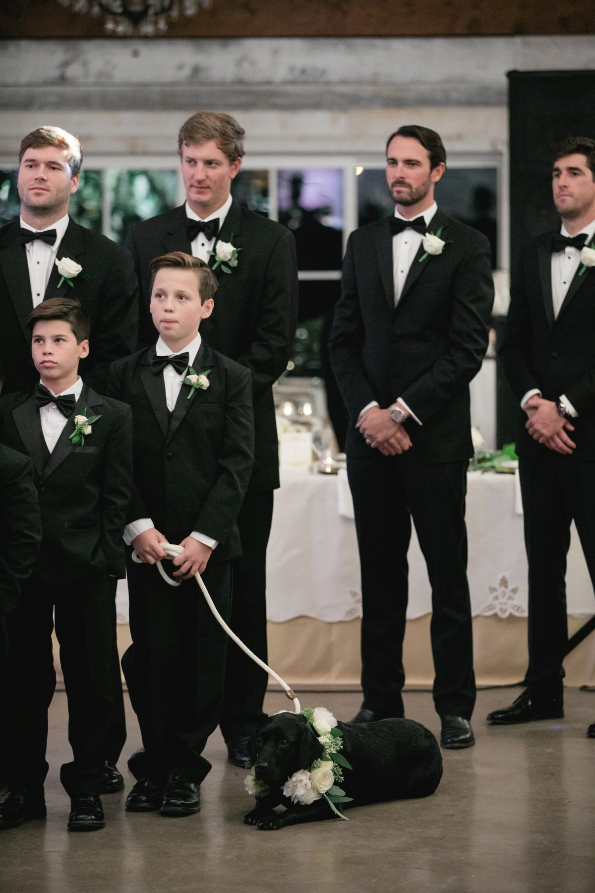 ring bearer with grooms dog