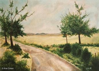 Road in Scotland Fields • דרך בשדות סקוטלנד