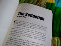 The Seduction by Anthony Hulse