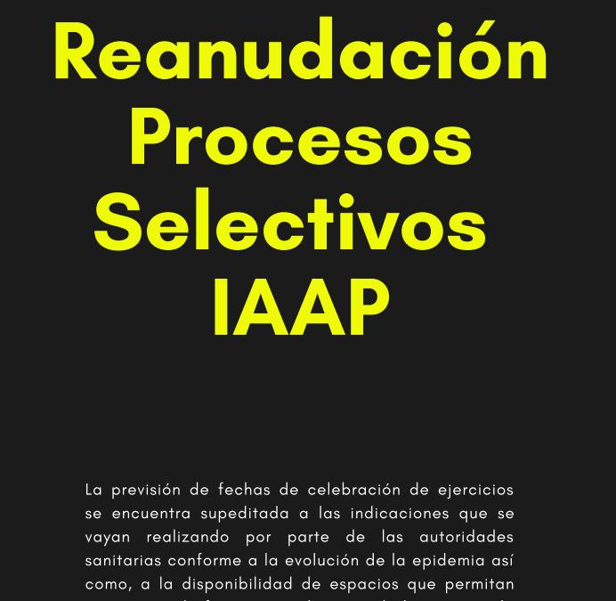 Actualización de procesos selectivos